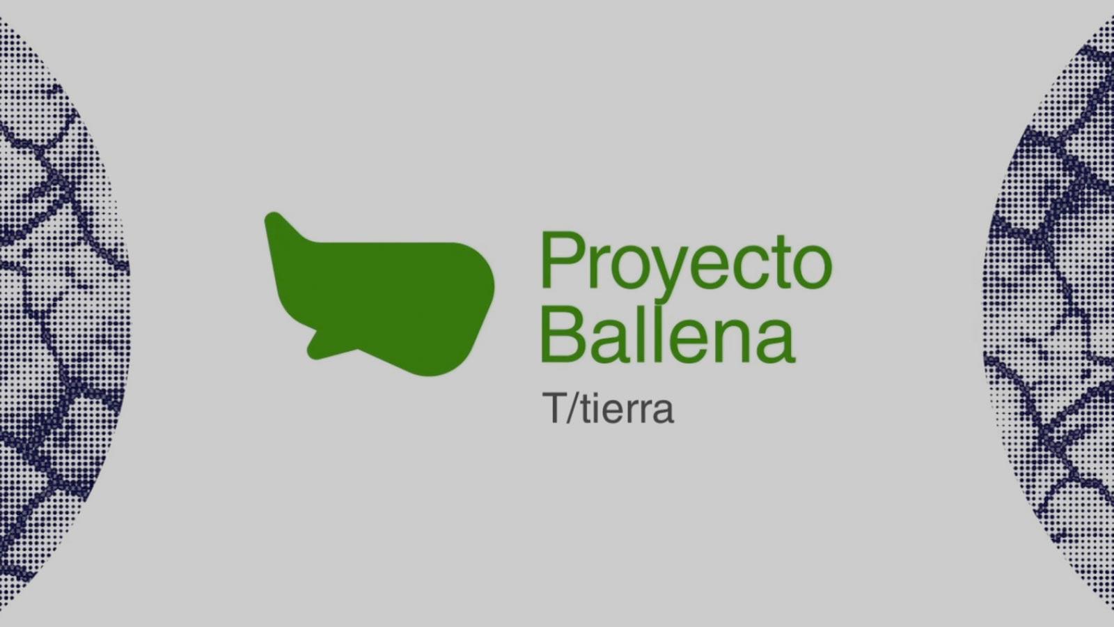protecto-ballena-cultura